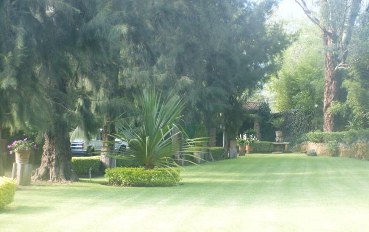 Foto de rancho en venta en tejeria , los reyes, tepoztlán, morelos, 1719846 No. 33