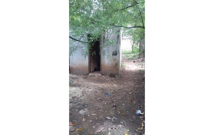 Foto de terreno habitacional en venta en  , tekax de álvaro obregón, tekax, yucatán, 1064001 No. 03
