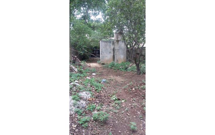Foto de terreno habitacional en venta en  , tekax de álvaro obregón, tekax, yucatán, 1064001 No. 04