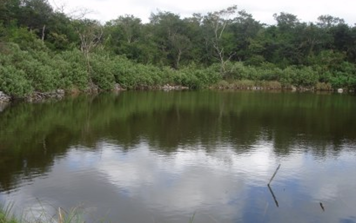 Foto de rancho en venta en  , tekit, tekit, yucatán, 1283139 No. 01