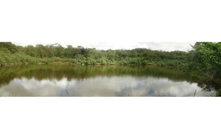 Foto de rancho en venta en  , tekit, tekit, yucatán, 1283139 No. 02
