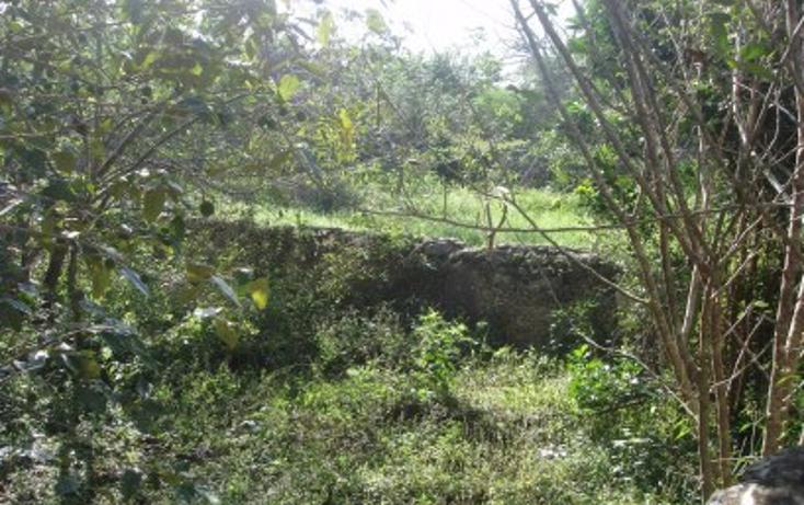Foto de rancho en venta en  , tekit, tekit, yucatán, 1283139 No. 07