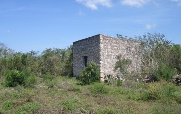 Foto de rancho en venta en  , tekit, tekit, yucatán, 1283139 No. 08