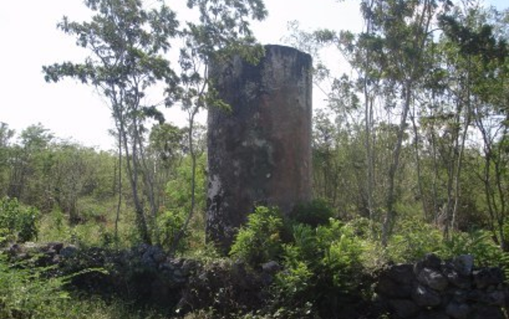 Foto de rancho en venta en  , tekit, tekit, yucatán, 1283139 No. 09