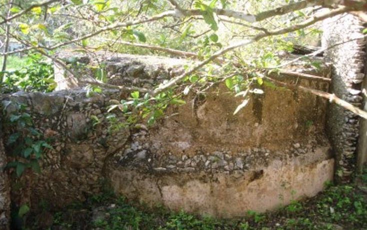Foto de rancho en venta en  , tekit, tekit, yucatán, 1283139 No. 10