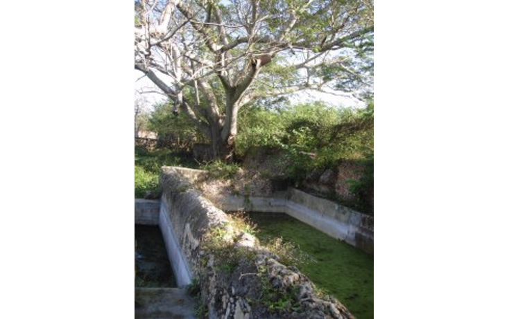 Foto de rancho en venta en  , tekit, tekit, yucatán, 1283139 No. 12