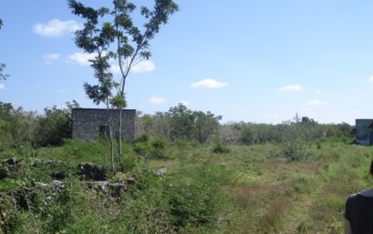 Foto de rancho en venta en  , tekit, tekit, yucatán, 1283139 No. 16
