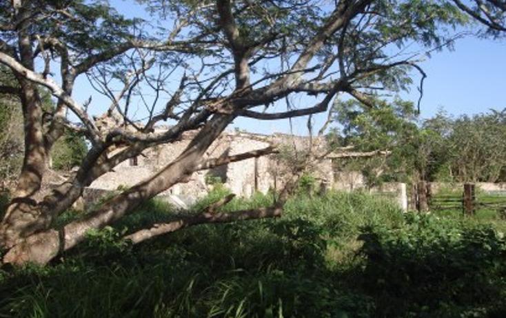 Foto de rancho en venta en  , tekit, tekit, yucatán, 1283139 No. 20