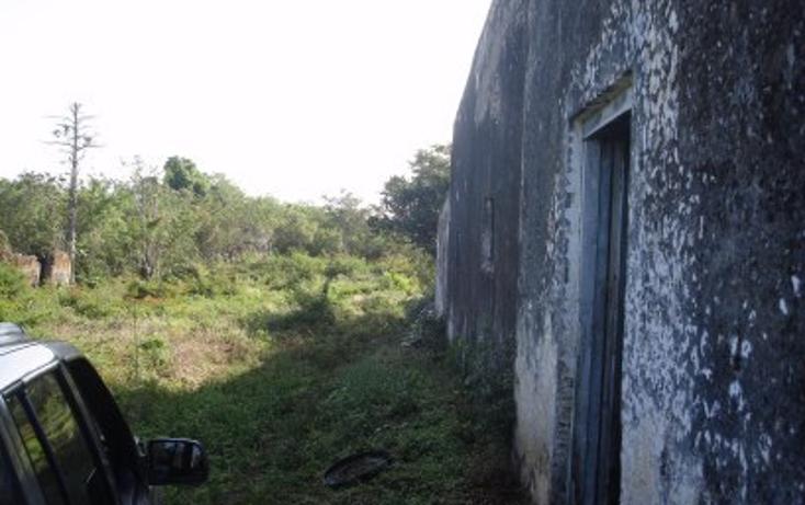 Foto de rancho en venta en  , tekit, tekit, yucatán, 1283139 No. 21