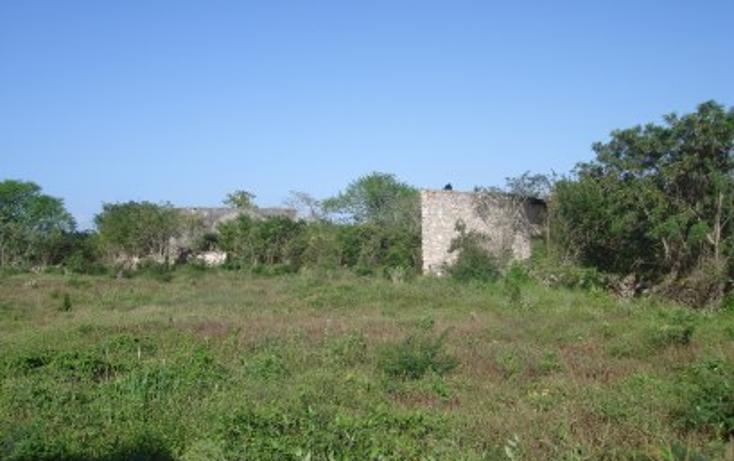 Foto de rancho en venta en  , tekit, tekit, yucatán, 1283139 No. 23
