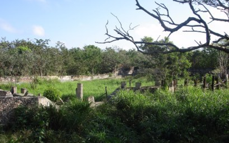 Foto de rancho en venta en  , tekit, tekit, yucatán, 1283139 No. 24