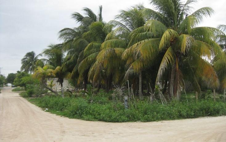 Foto de terreno habitacional en venta en  , telchac puerto, telchac puerto, yucatán, 1039759 No. 03