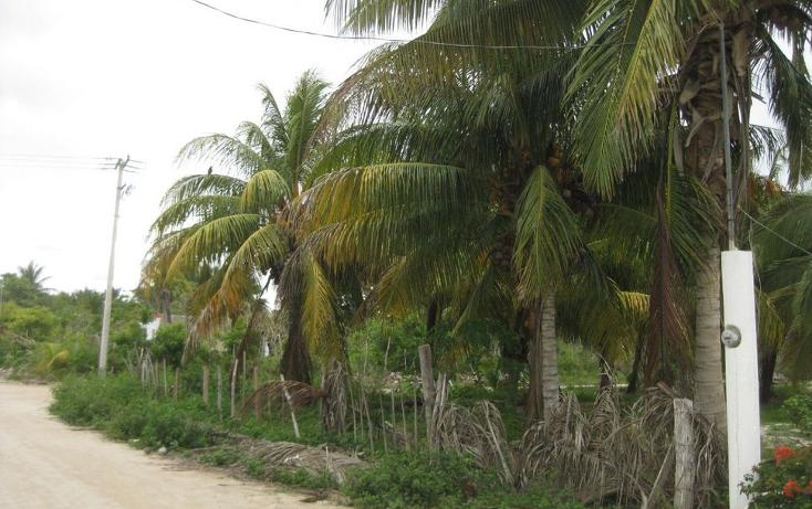 Foto de terreno habitacional en venta en  , telchac puerto, telchac puerto, yucatán, 1039759 No. 07