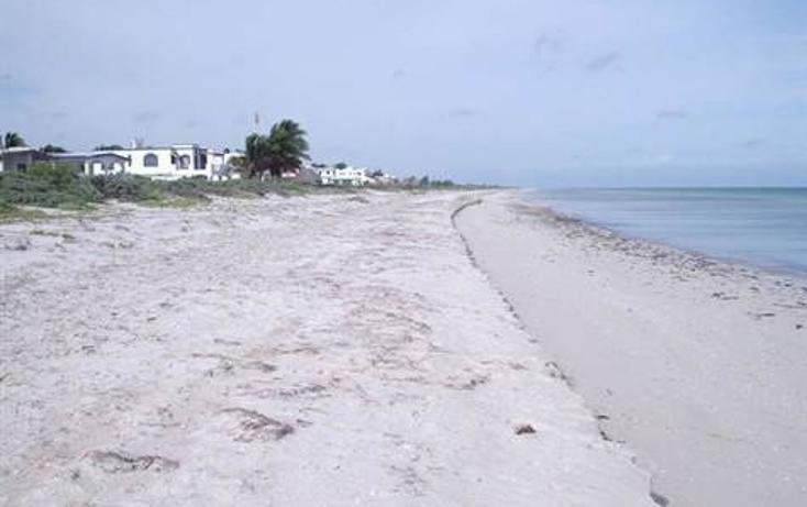 Foto de casa en venta en  , telchac puerto, telchac puerto, yucat?n, 1270439 No. 16