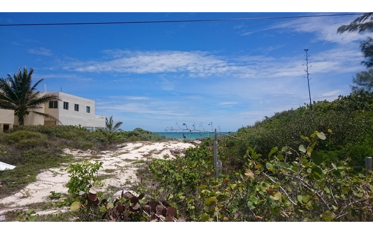 Foto de terreno habitacional en venta en  , telchac puerto, telchac puerto, yucat?n, 1310255 No. 02