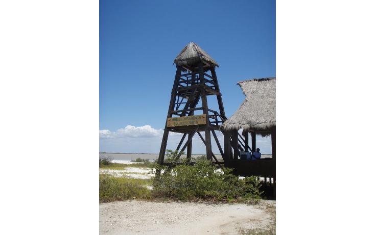 Foto de terreno habitacional en venta en  , telchac puerto, telchac puerto, yucatán, 1334527 No. 04