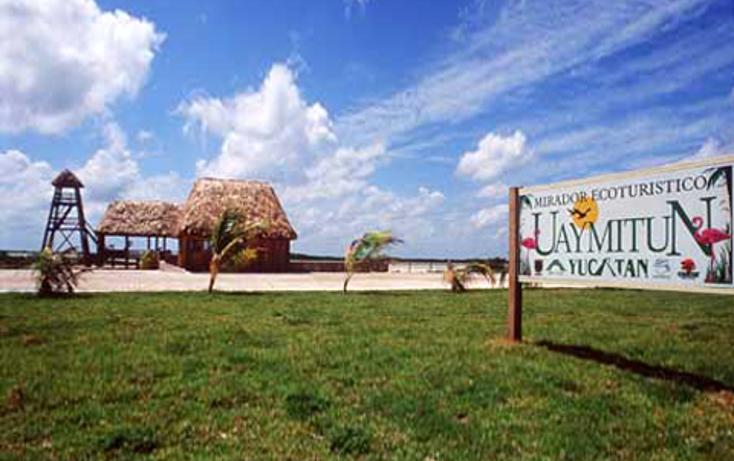Foto de terreno habitacional en venta en  , telchac puerto, telchac puerto, yucatán, 1334527 No. 06