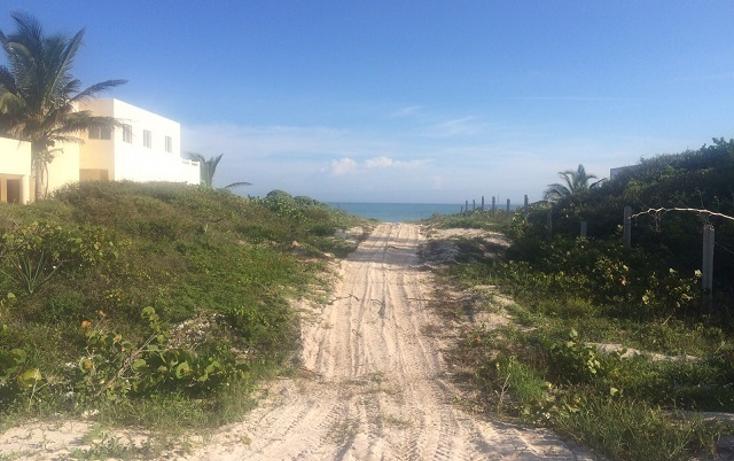Foto de terreno habitacional en venta en  , telchac puerto, telchac puerto, yucatán, 1334527 No. 10