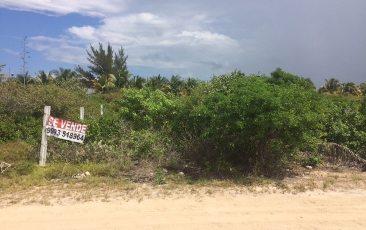 Foto de terreno habitacional en venta en  , telchac puerto, telchac puerto, yucatán, 1334527 No. 16