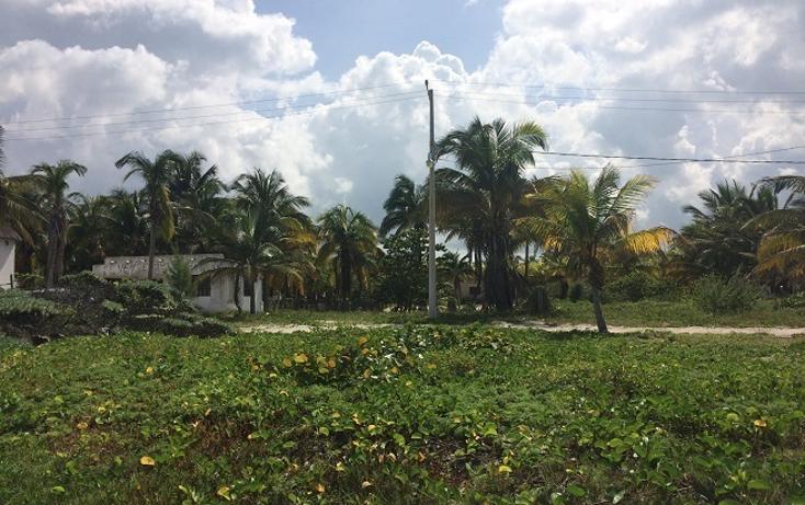 Foto de terreno habitacional en venta en  , telchac puerto, telchac puerto, yucatán, 1440735 No. 02