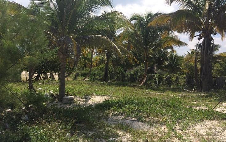 Foto de terreno habitacional en venta en  , telchac puerto, telchac puerto, yucatán, 1440735 No. 05
