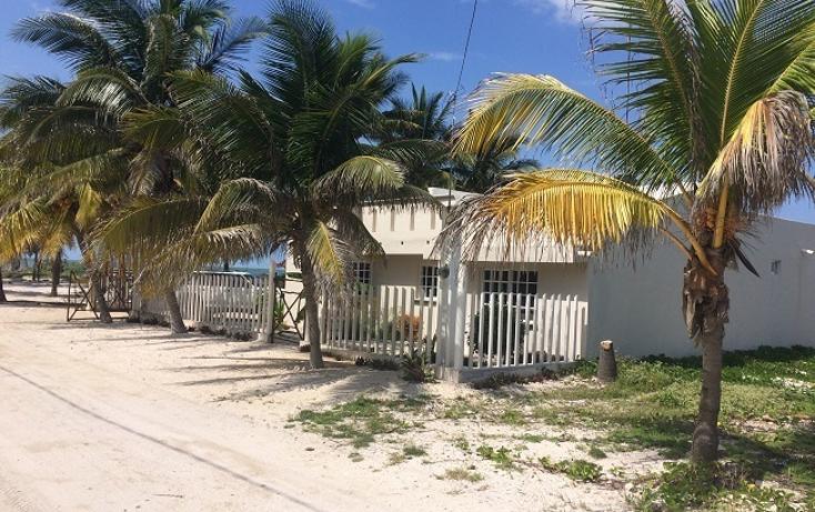 Foto de terreno habitacional en venta en  , telchac puerto, telchac puerto, yucatán, 1440735 No. 06
