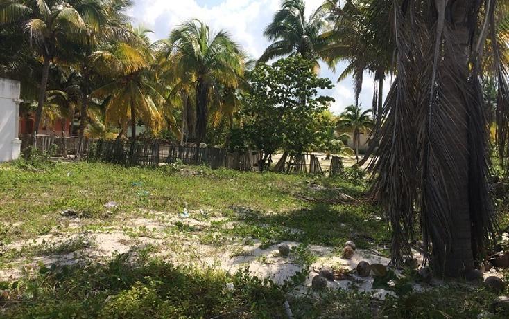 Foto de terreno habitacional en venta en  , telchac puerto, telchac puerto, yucatán, 1440735 No. 07