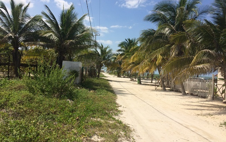 Foto de terreno habitacional en venta en  , telchac puerto, telchac puerto, yucatán, 1440735 No. 08