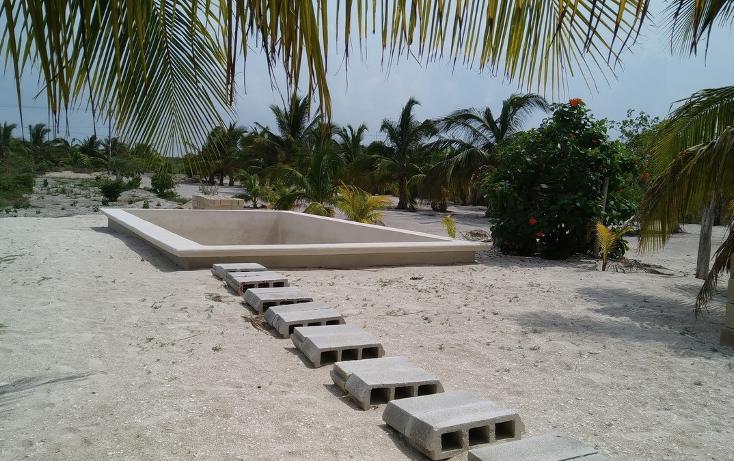 Foto de casa en renta en  , telchac puerto, telchac puerto, yucatán, 1520505 No. 14