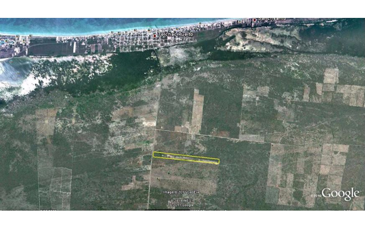 Foto de terreno habitacional en venta en  , telchac puerto, telchac puerto, yucat?n, 1697904 No. 01
