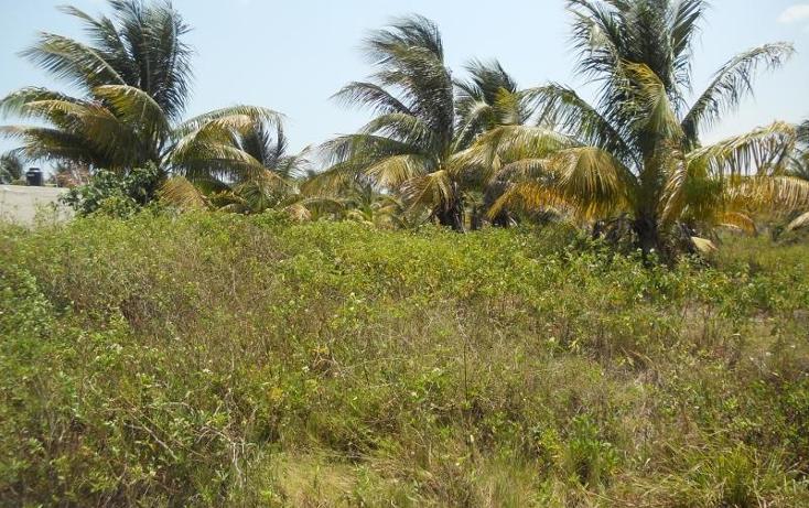 Foto de terreno habitacional en venta en  , telchac puerto, telchac puerto, yucat?n, 468692 No. 03
