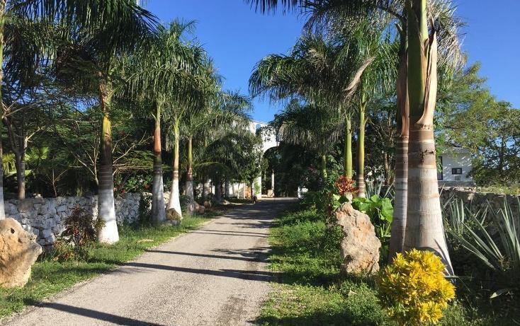 Foto de rancho en venta en telchac pueblo, yucatán , telchac, telchac pueblo, yucatán, 1939153 No. 15