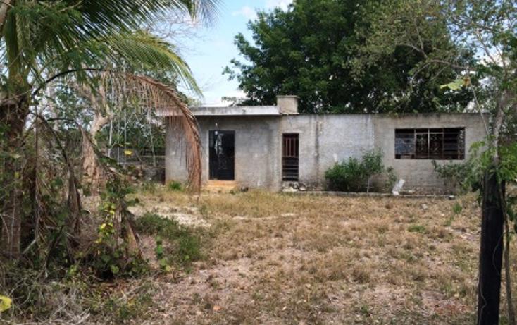 Foto de rancho en venta en  , temax, temax, yucat?n, 1268857 No. 01