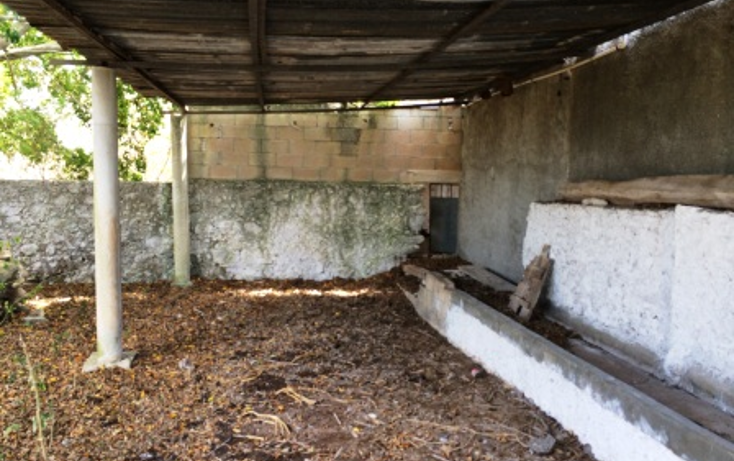 Foto de rancho en venta en  , temax, temax, yucatán, 1268857 No. 09