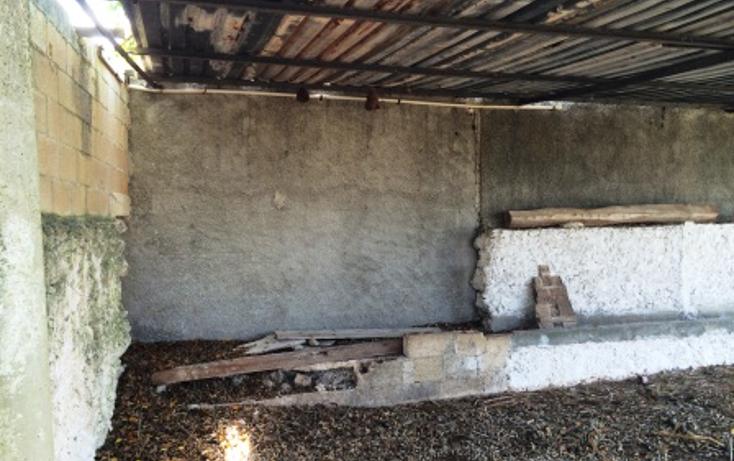 Foto de rancho en venta en  , temax, temax, yucat?n, 1268857 No. 14