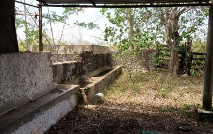 Foto de rancho en venta en  , temax, temax, yucat?n, 1268857 No. 16