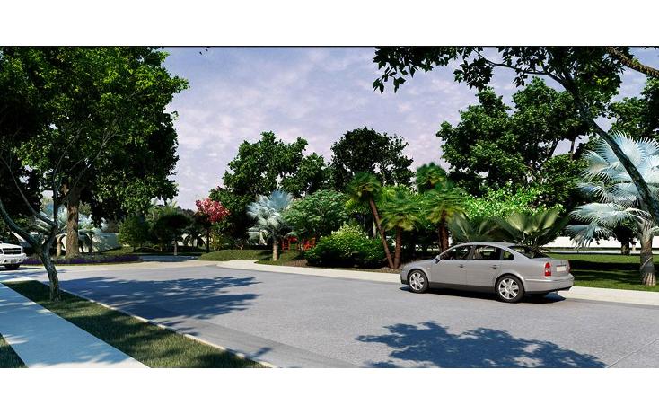 Foto de terreno habitacional en venta en  , temozon norte, mérida, yucatán, 1060181 No. 04