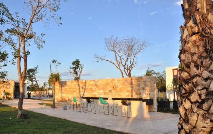 Foto de terreno habitacional en venta en  , temozon norte, mérida, yucatán, 1176705 No. 04