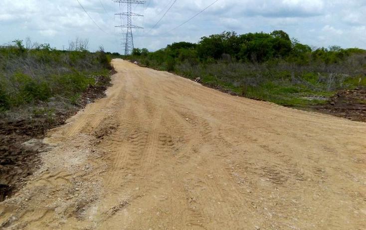 Foto de terreno habitacional en venta en  , temozon norte, mérida, yucatán, 1183735 No. 05