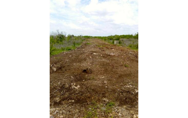 Foto de terreno habitacional en venta en  , temozon norte, mérida, yucatán, 1183735 No. 06