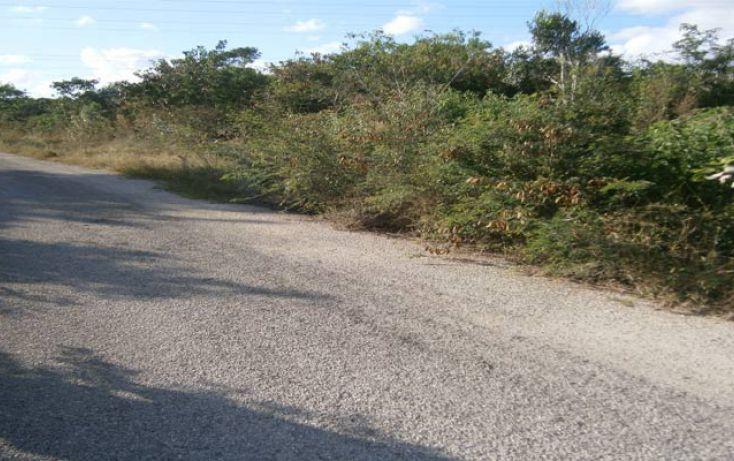 Foto de terreno habitacional en venta en, temozon norte, mérida, yucatán, 1202885 no 01