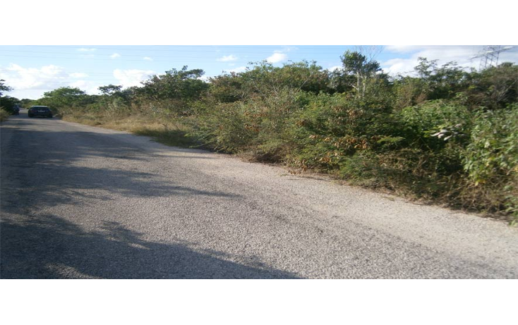 Foto de terreno habitacional en venta en  , temozon norte, m?rida, yucat?n, 1202885 No. 01