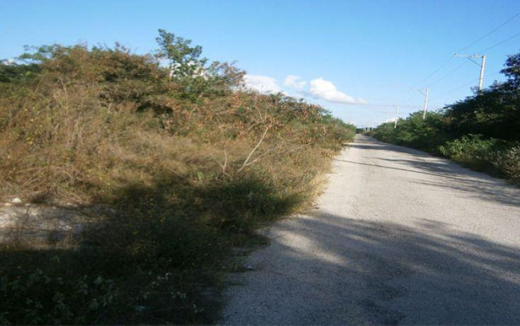 Foto de terreno habitacional en venta en, temozon norte, mérida, yucatán, 1202885 no 02