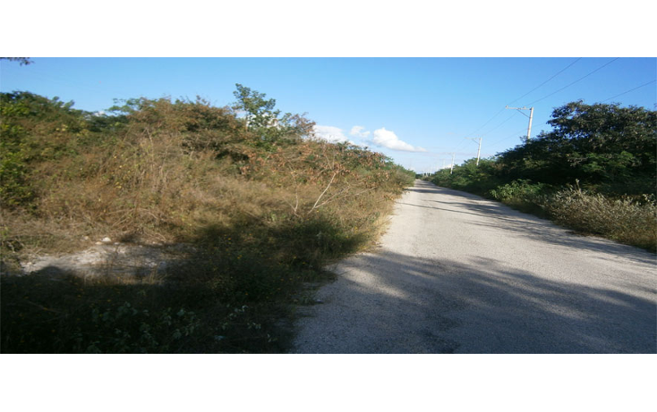 Foto de terreno habitacional en venta en  , temozon norte, m?rida, yucat?n, 1202889 No. 01