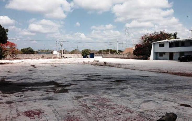 Foto de edificio en renta en  , temozon norte, mérida, yucatán, 1203367 No. 06