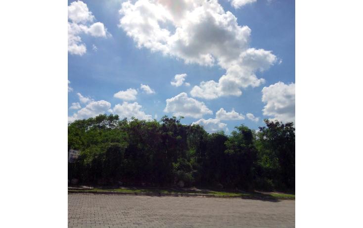 Foto de terreno comercial en venta en  , temozon norte, mérida, yucatán, 1267509 No. 01