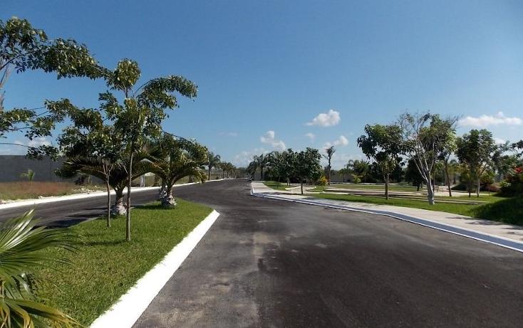 Foto de terreno habitacional en venta en  , temozon norte, mérida, yucatán, 1279945 No. 05