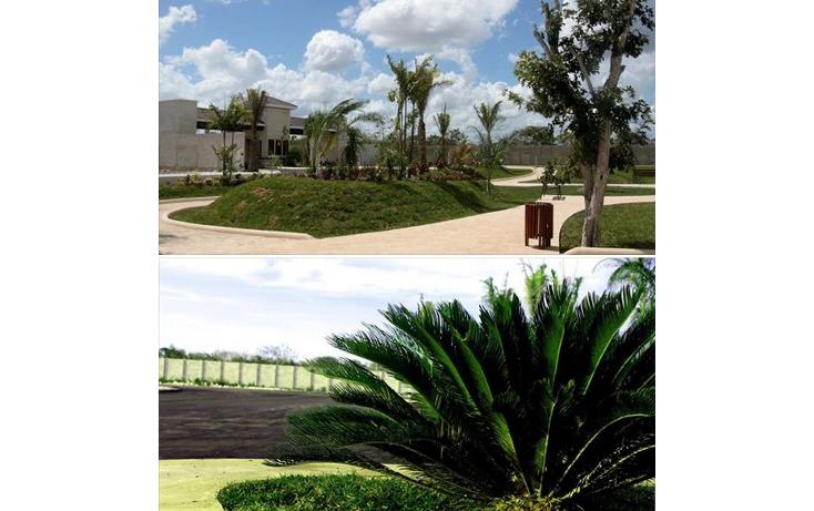 Foto de terreno habitacional en venta en  , temozon norte, m?rida, yucat?n, 1285529 No. 06
