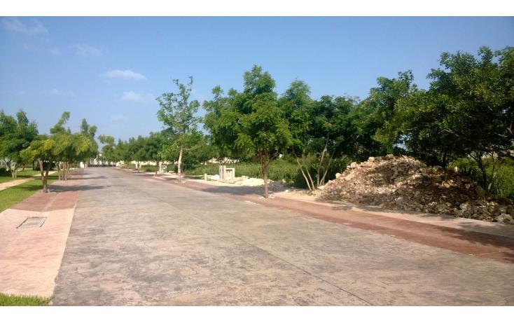 Foto de terreno habitacional en venta en  , temozon norte, mérida, yucatán, 1294991 No. 02