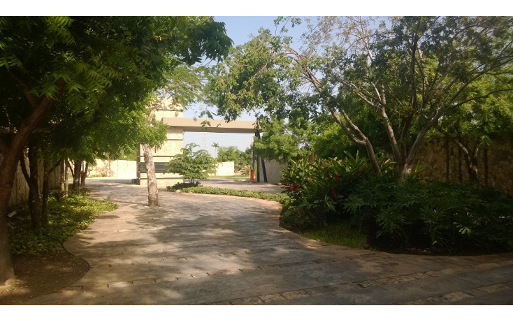 Foto de terreno habitacional en venta en  , temozon norte, mérida, yucatán, 1294991 No. 07